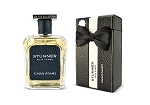Stunner -  Pour Homme (for Men) Natrual Spray Perfume (100ml) by Chris Adams